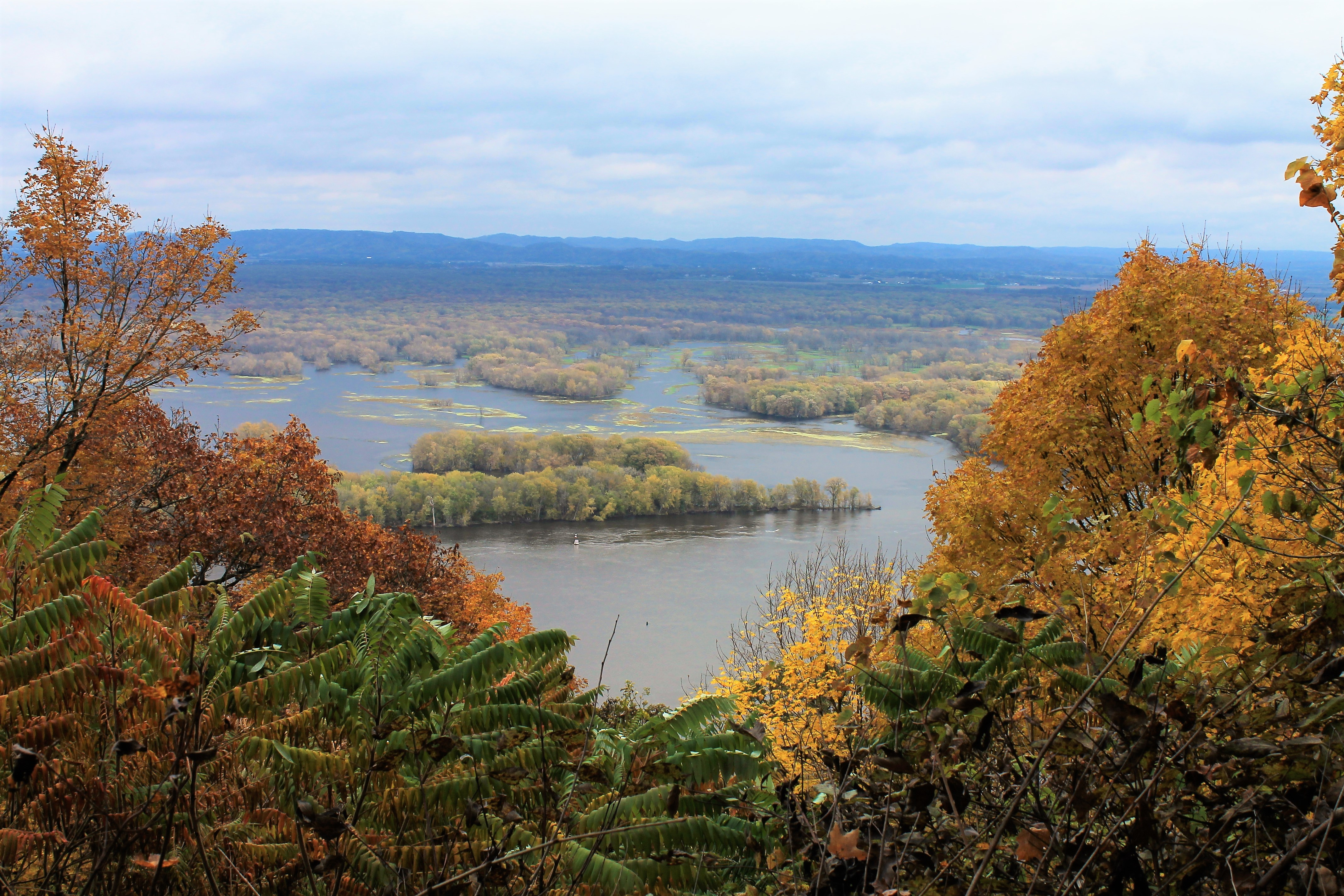 Beautiful Overlook in Great River Bluffs State Park