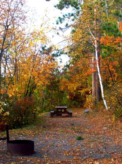 Burntside State Forest - Minnesota DNR